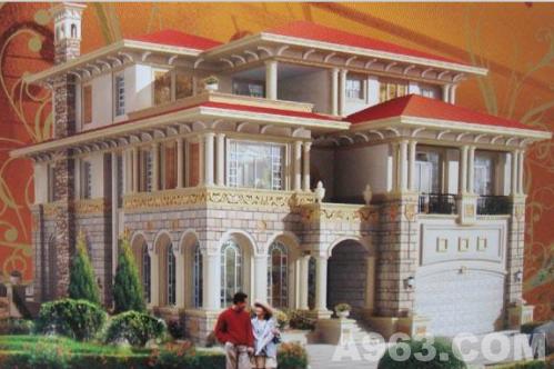 二层三层农村欧式小别墅设计图纸 农村自建房设计 整套建筑施工图